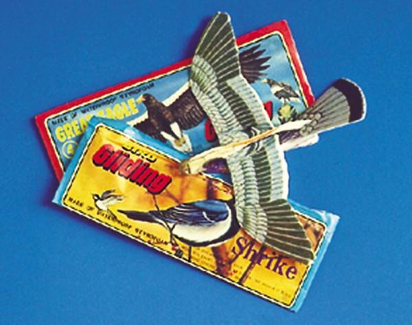 Vogelgleiter Bastelset